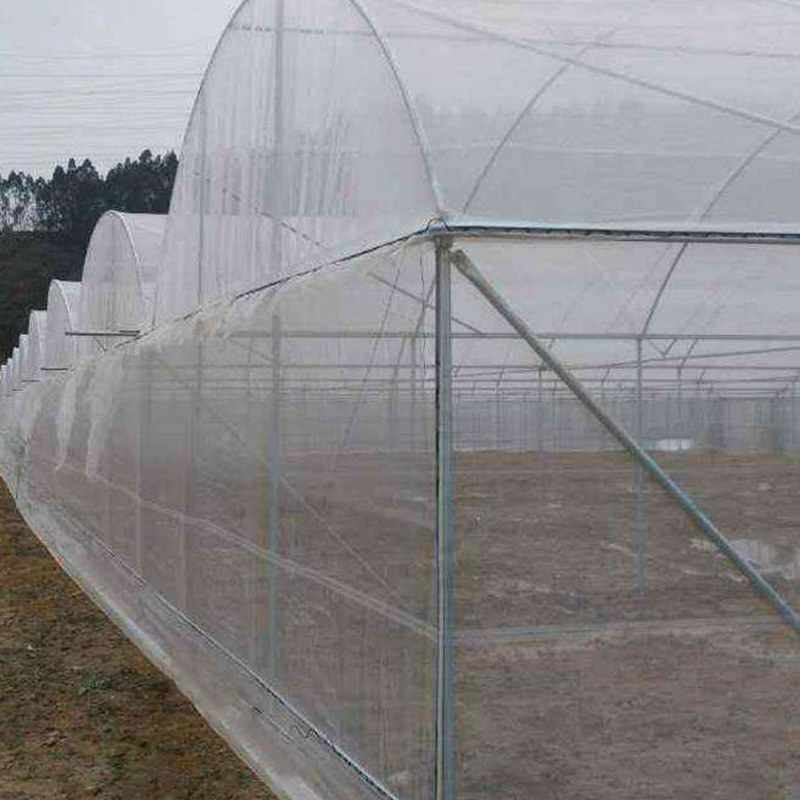 Tulip fabrics PP Non Woven Fabric for Agricultural Usage